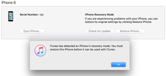 Put your iPhone into Recovery Mode.