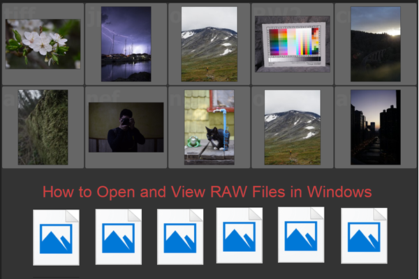 Best Methods to Open RAW Files on Windows/Mac Free