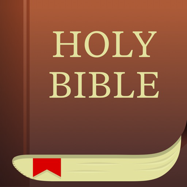 Bible by Life Church is one of the top best Bible study apps for Android users.