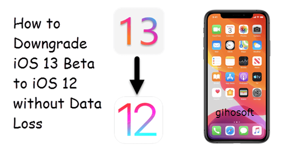 Downgrade iOS 13 Beta/iPadOS to iOS 12