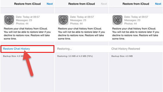 How to Restore WhatsApp Messages from iCloud to iPhone