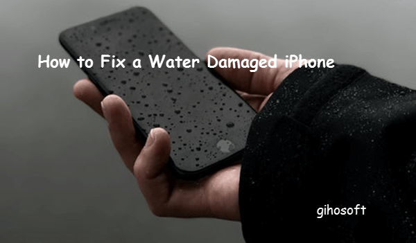 Repair a Water Damaged iPhone.