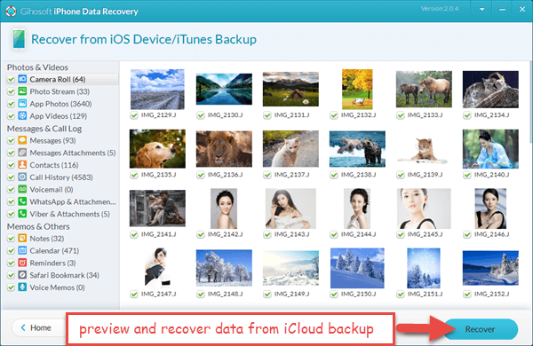 Recover permanently deleted files from iCloud backup