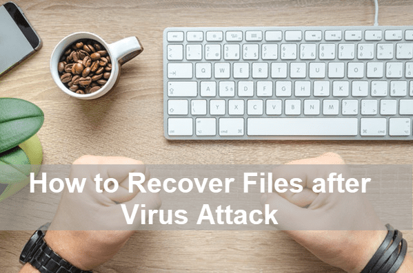 Recover Files from Virus Infected Hard Drive Free