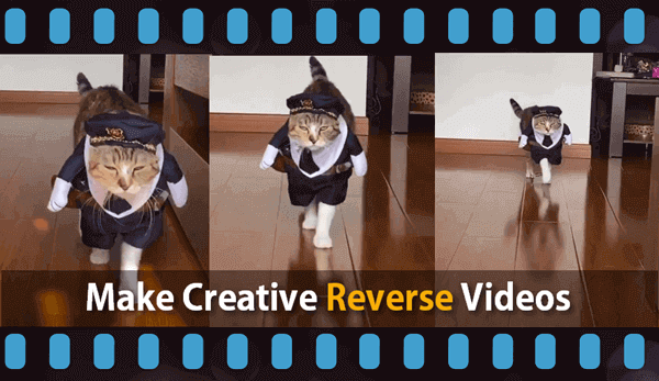 How To Make Reverse Videos.